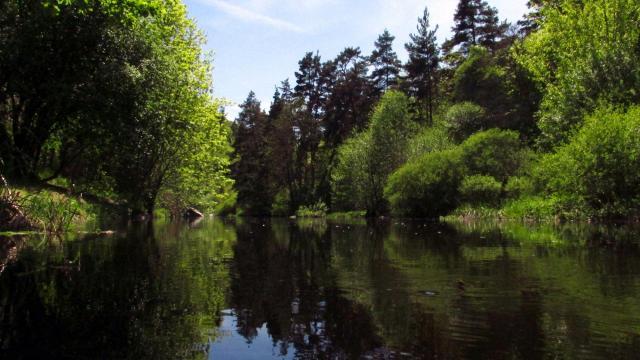 Rivière le Chapeaurou