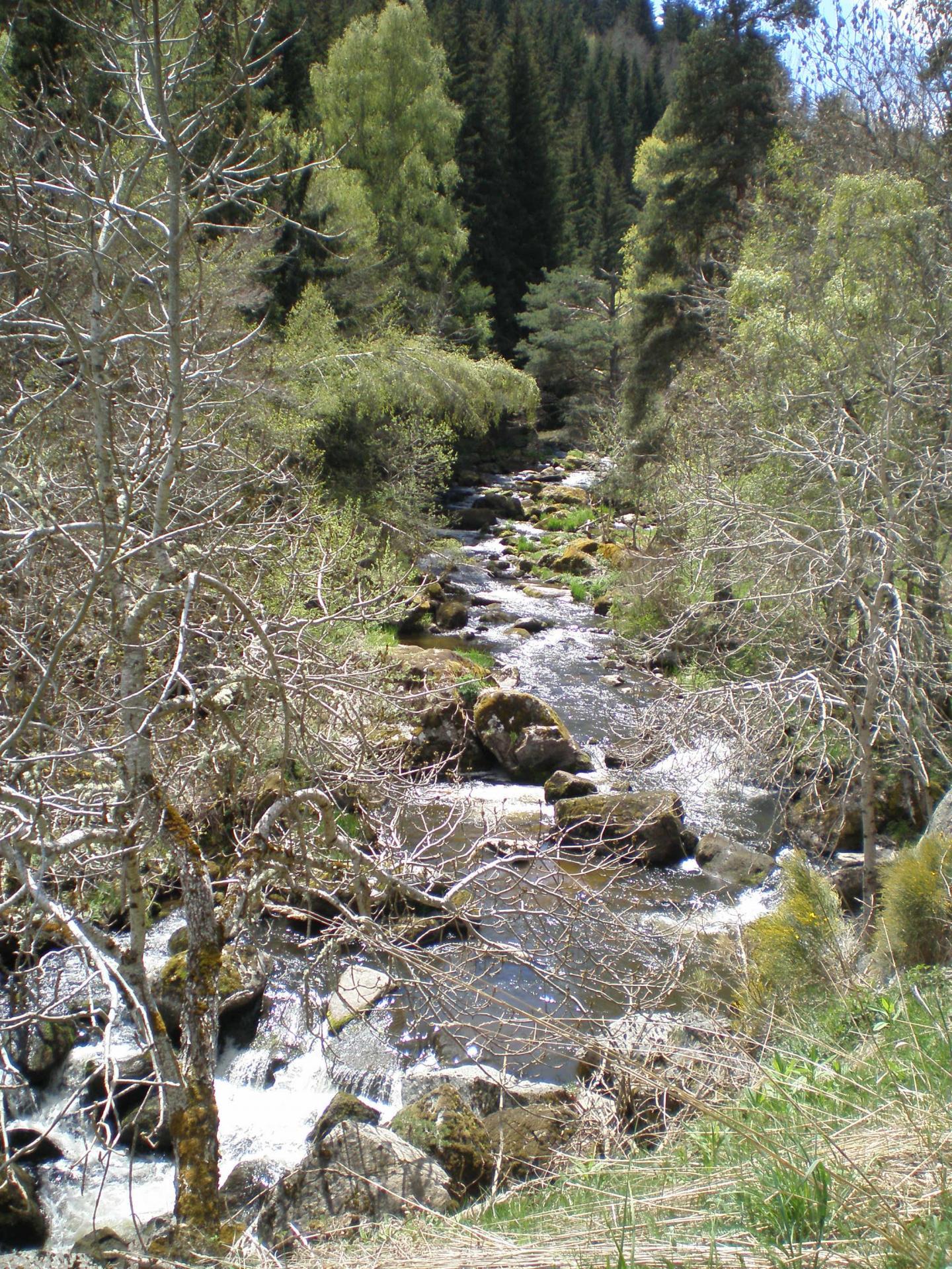 Le ruisseau Le Grandrieu